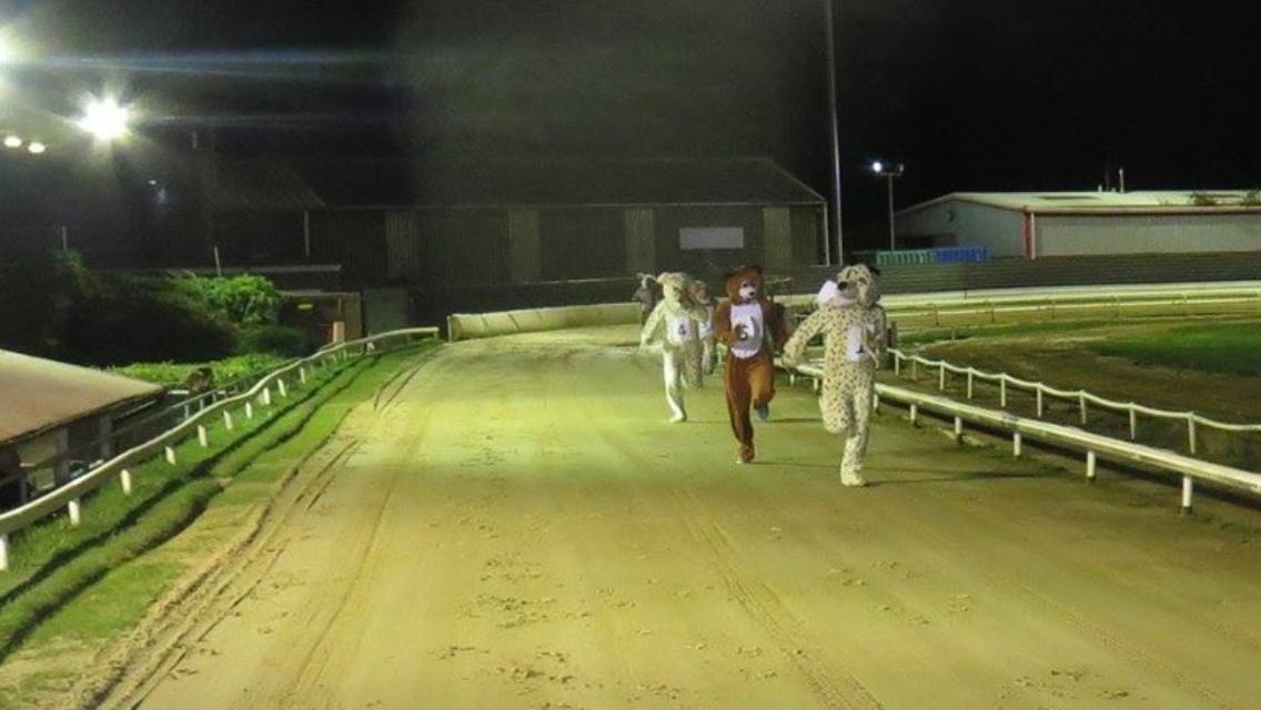Peterborough dog racing betting pirkti bitcoins
